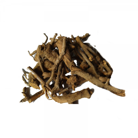 Pushkarmool root